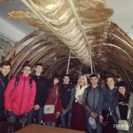 Екскурсія в  Зоологічний музей Чернівецького національного університету ім. Юрія Федьковича