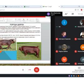 Відкрите онлайн-заняття з дисципліни «Тваринництво, зоогігієна та ветеринарна санітарія»