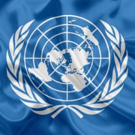 СЬОГОДНІ   МІЖНАРОДНИЙ  ДЕНЬ  ООН